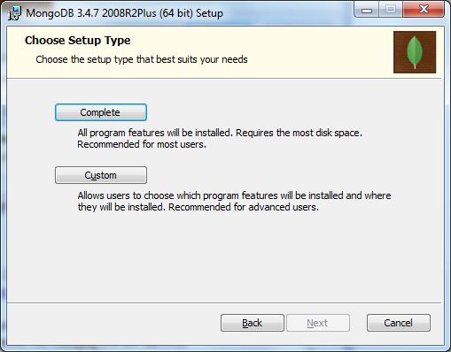 MongoDB Installation - SetUp Type