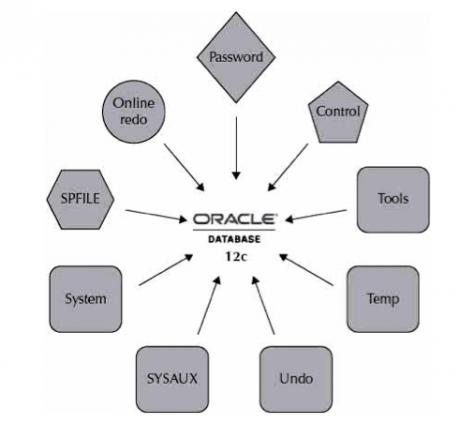Oracle data base