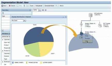 SAP Customer Segmentation