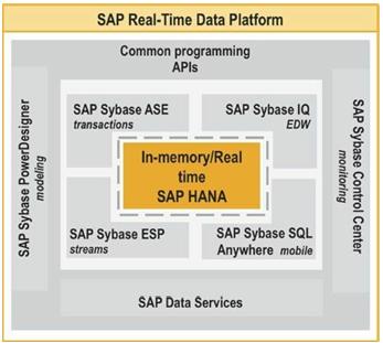 SAP Real Time Data Platform