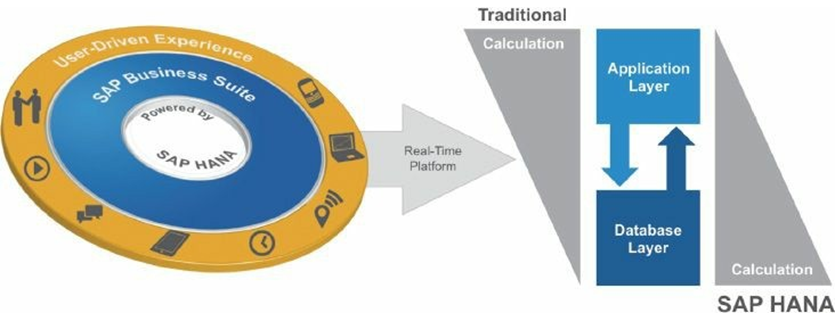 Architectural Implications of SAP HANA