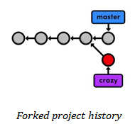 Forked project history