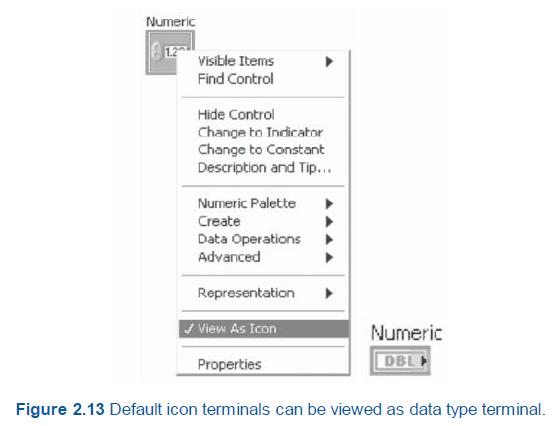 Data type icon terminal