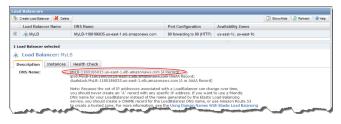 Record the public DNS address