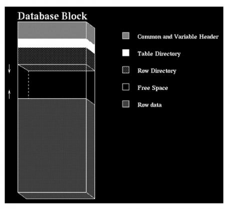 Data Block Format