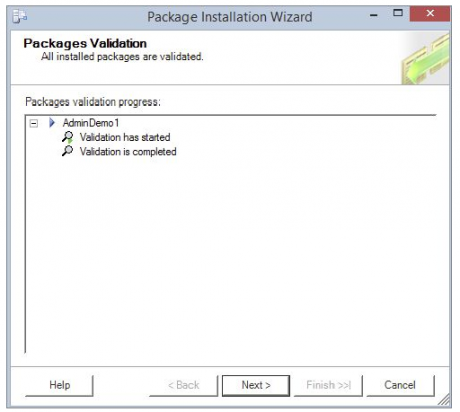 Packages Validation screen