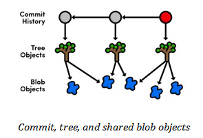 commit, tree and shared blod objects