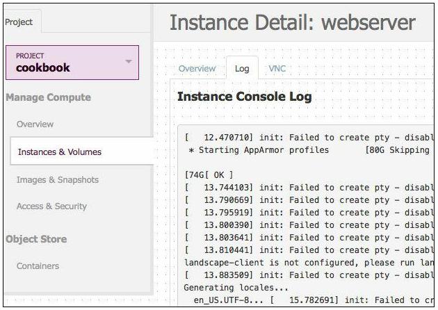 Instance Console log