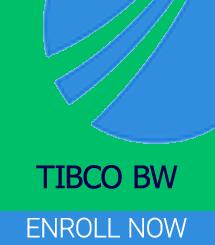TIBCO BW