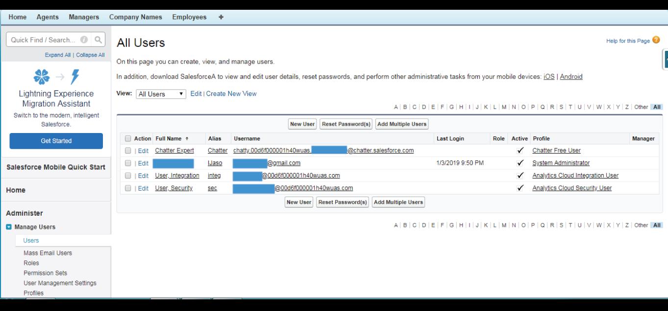 User Management in Salesforce