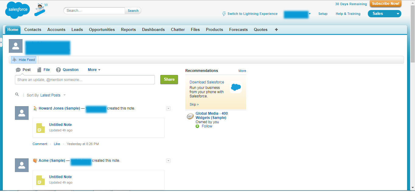 SalesForce Environment