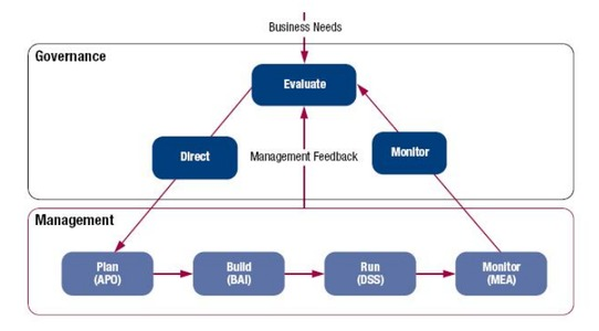 cobit govenance and management