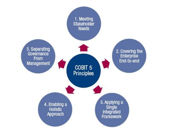 principles of Cobit