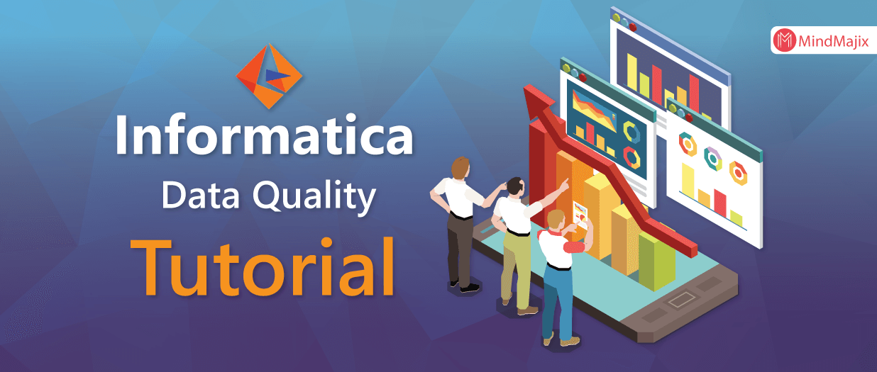 Informatica Data Quality Tutorial - For Beginners