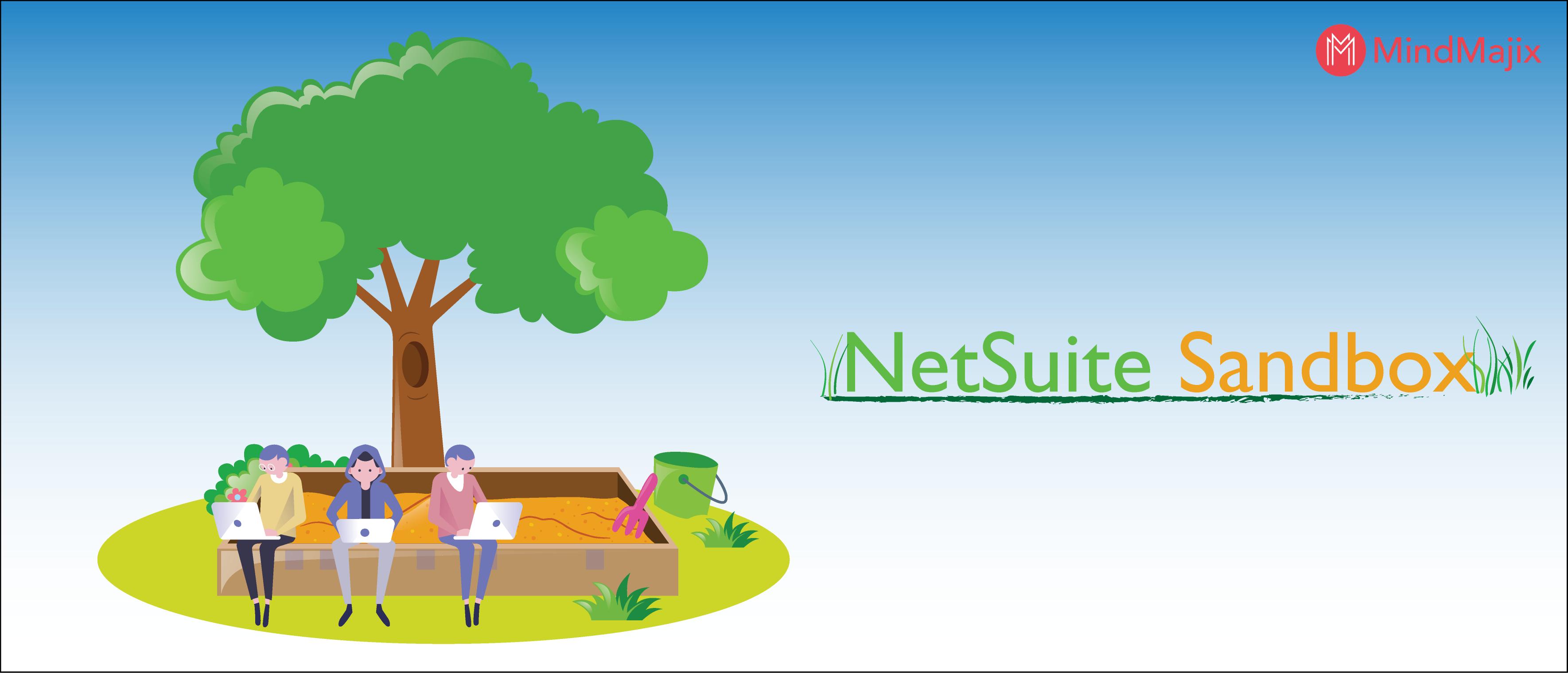 NetSuite Sandbox