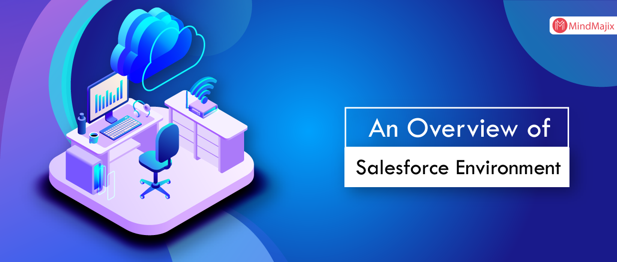 An Overview of Salesforce Environment