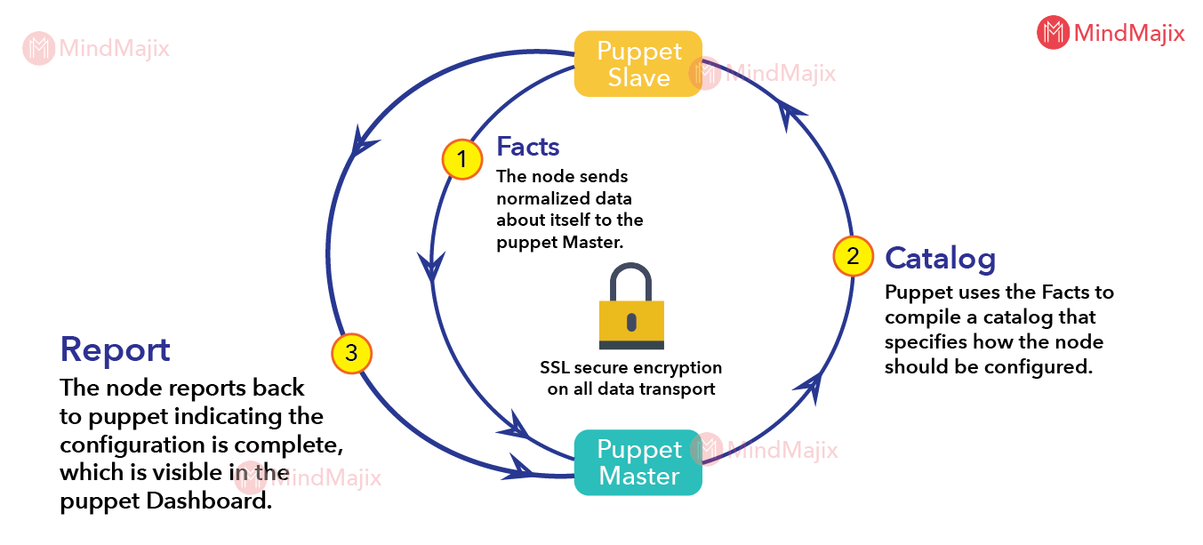 Understand the Working of Puppet