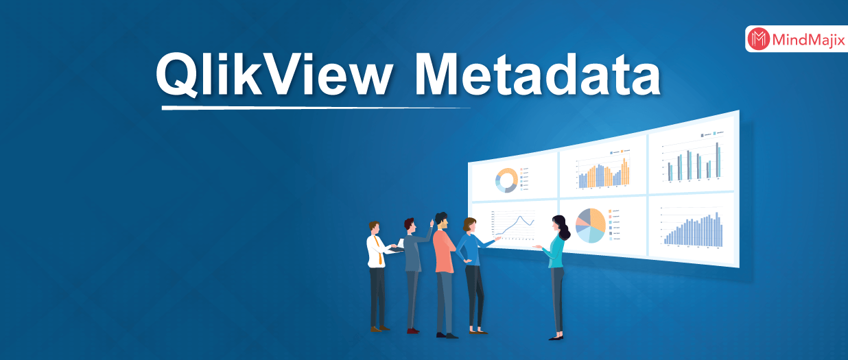 QlikView Metadata