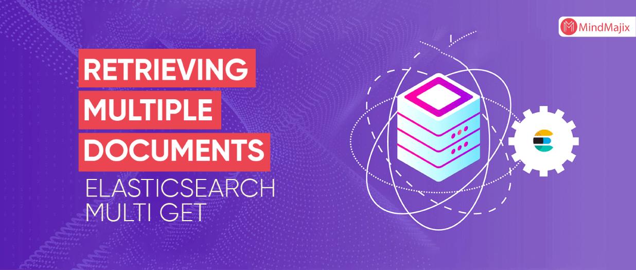 Retrieving Multiple Documents - Elasticsearch Multi Get