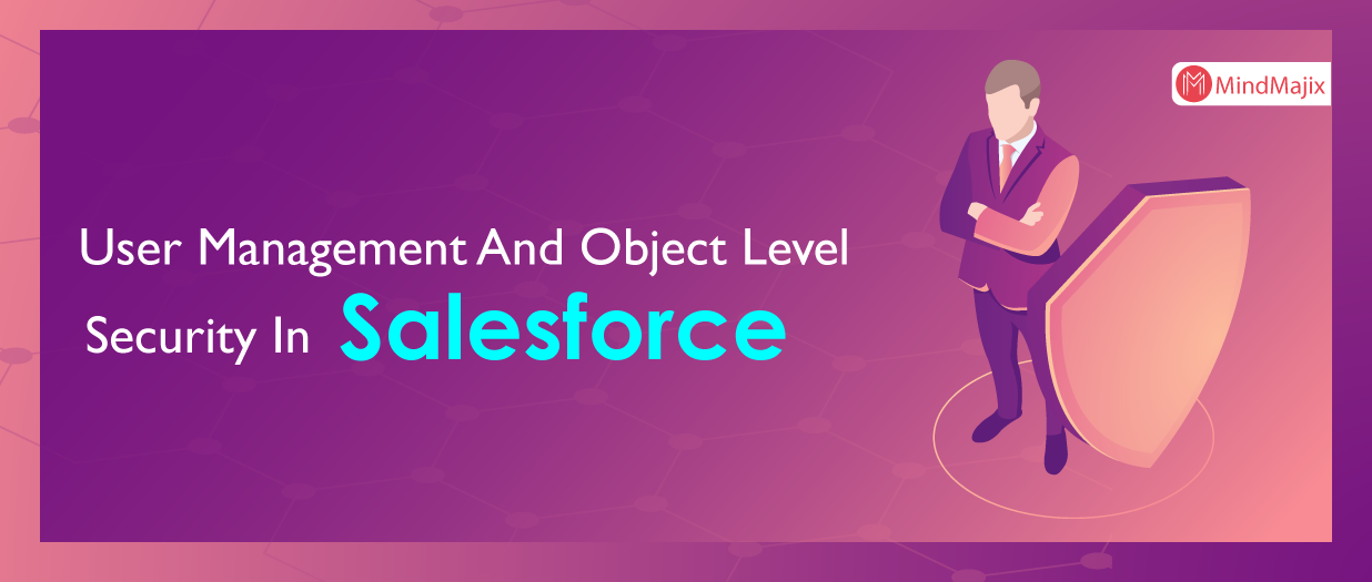 User Management And Object Level Security In Salesforce