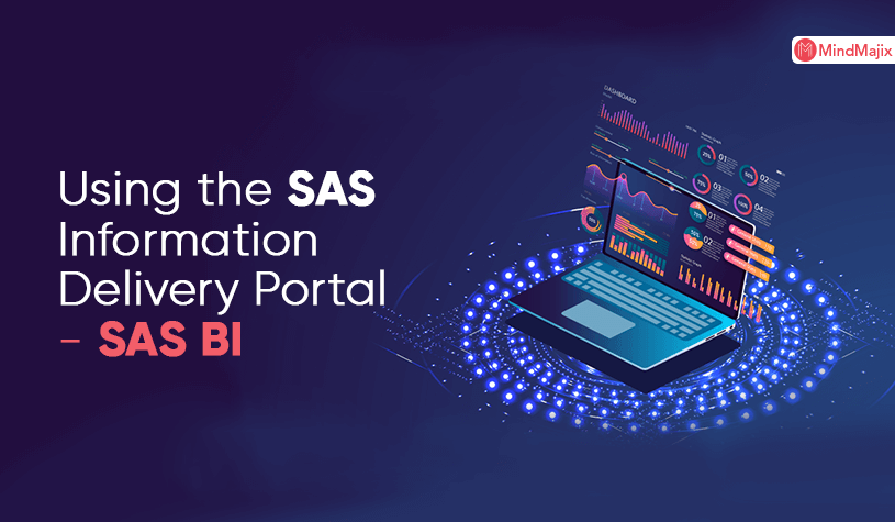 Using the SAS Information Delivery Portal - SAS BI