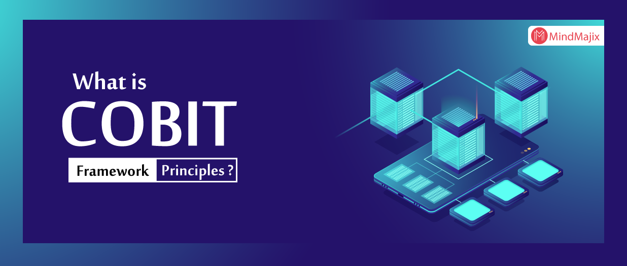 What is COBIT Framework - COBIT Principles ?