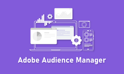 Adobe Audience Manager Training