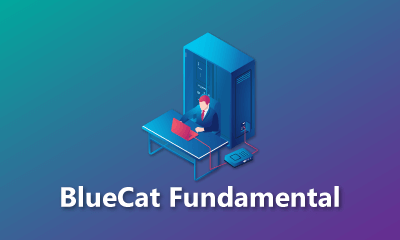 BlueCat Fundamental Training