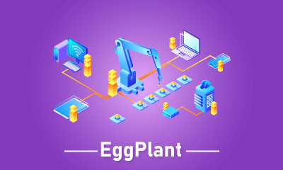 EggPlant Training