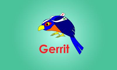 Gerrit Training