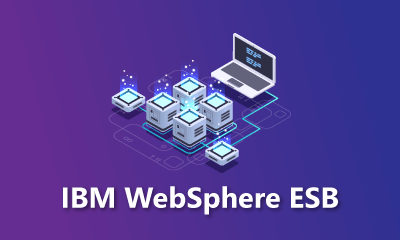 IBM WebSphere ESB Training