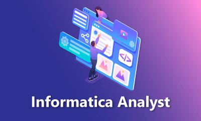 Informatica Analyst Training