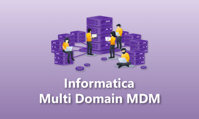 Informatica Multi Domain MDM Training
