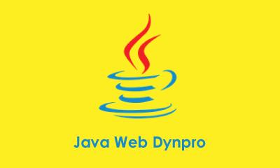 Java Web Dynpro Training