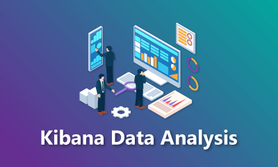 Kibana Data Analysis Training