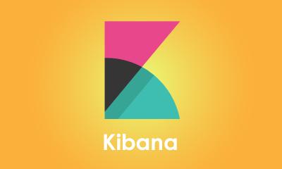 Kibana Training