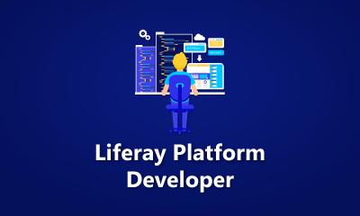 Liferay Platform Developer Training