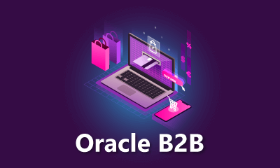Oracle B2B Training