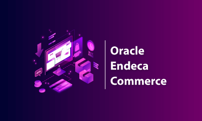 Oracle Endeca Commerce Training