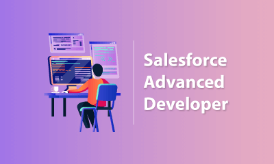 Salesforce Advanced Developer Training