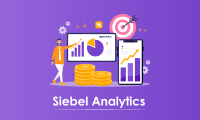 SIEBEL Analytics Functional Training