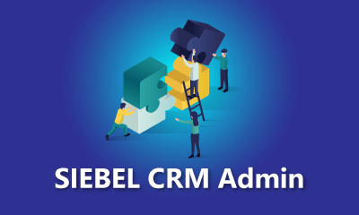 SIEBEL CRM Admin Training