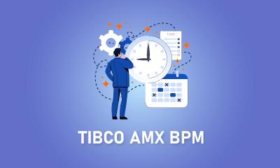 TIBCO AMX BPM Training