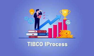 TIBCO IProcess Training