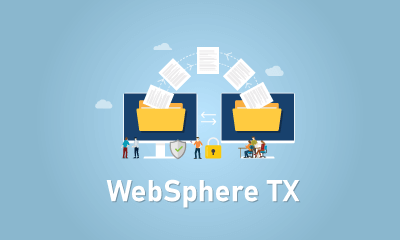 WebSphere TX Training