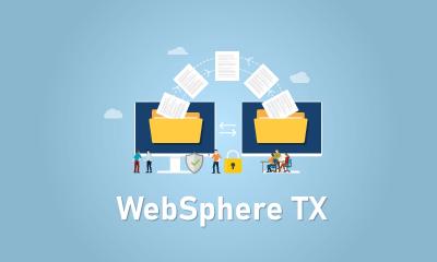WebSphere TX Training